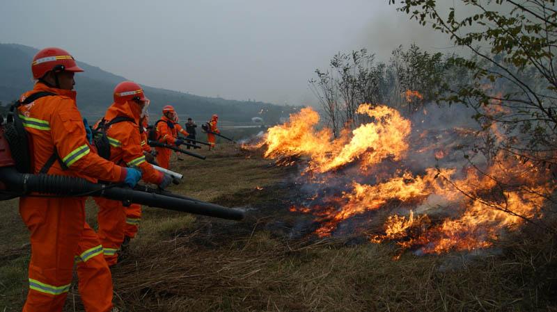 森林防火方案