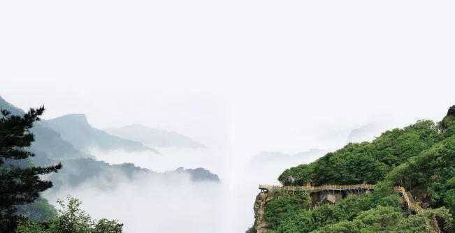 连云港将新增12个森林公园,快看有你家附近的么!