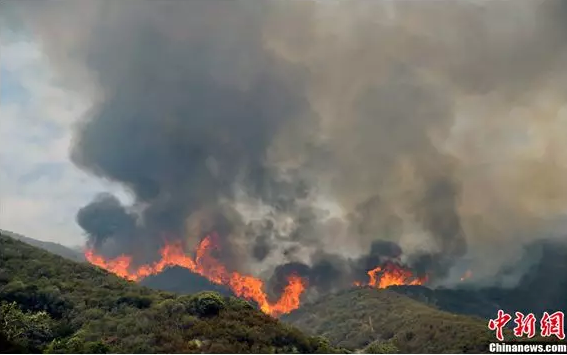 森林防火智能视频监控预警系统