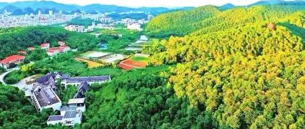 智能化生态环境监测系统