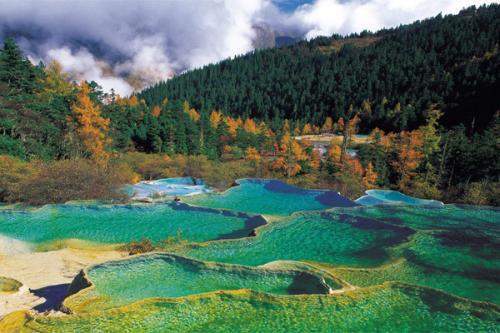 自然保护区管理系统