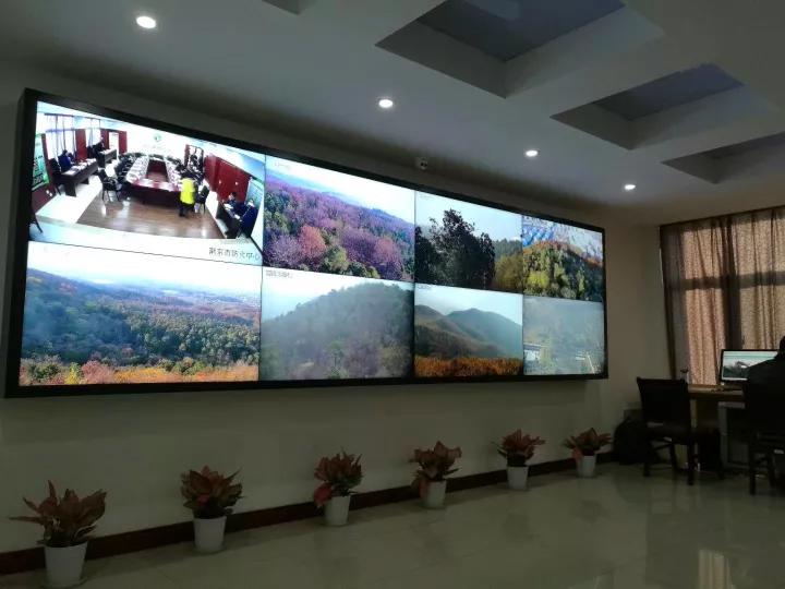 森林防火监控系统肃北党项峡谷项目验收