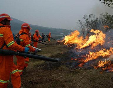 森林草原防火方案